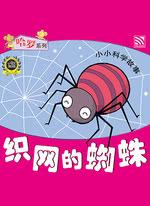 织网的蜘蛛