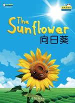 天气、季节与大自然·向日葵