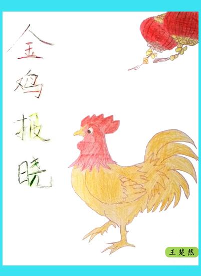 金鸡报晓(王楚然)